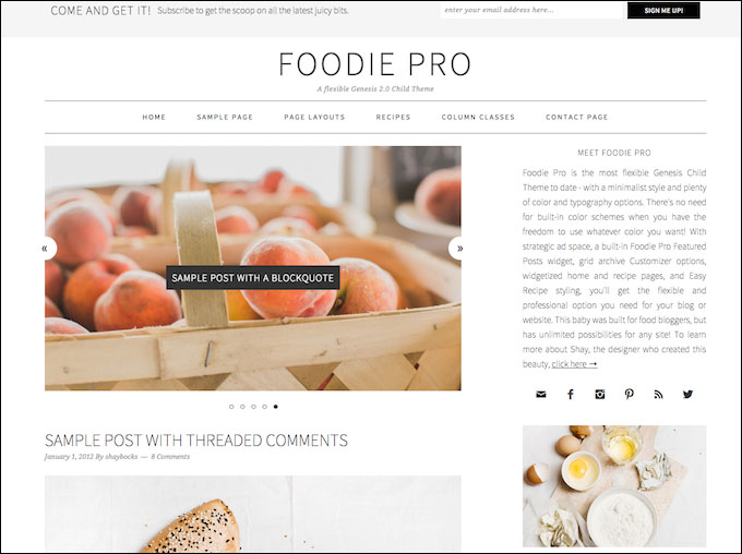 how to add pagination to foodie pro theme