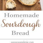 There's nothing quite like the aroma, texture and taste of homemade sourdough bread. Very easy to make with step by step tutorial